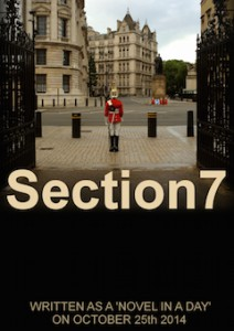 Section7_med